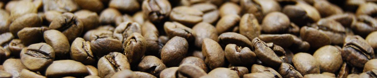 Gourmet coffee roasters