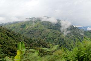 Tanzania Mara AB